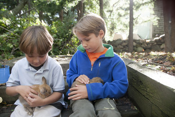 Eight and ten-year-old brothers hold their new six-week-old pet Holland Lop bunnies in Marblehead, Massachusetts