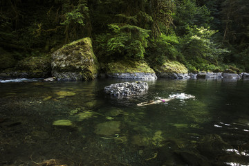 CASCADE LOCKS, OREGON, USA. A woman in bikini swims under the surface of a clear river pool in a mossy forest.