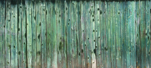 Texture wooden fence with vertical green boards and faded paint