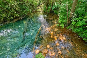 Fusion blue sulphur spring with red glandular stream.