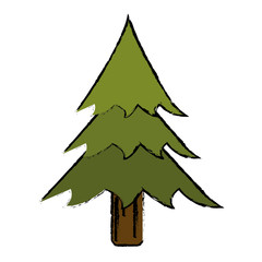 drawing pine tree forest camping icon vector illustration eps 10