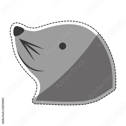 Sea lion cartoon icon vector illustration graphic design