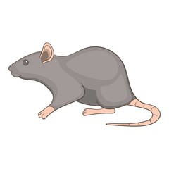 Rat icon. Cartoon illustration of rat vector icon for web