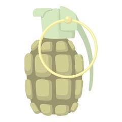 Hand grenade icon. Cartoon illustration of hand grenade vector icon for web