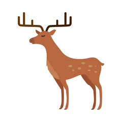 Deer in Flat Style Isolated on White