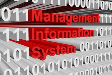 Management information system in the form of binary code, 3D illustration