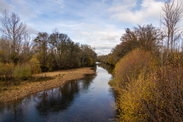 Río Eria y vegetación de ribera.
