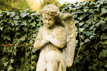 Angel old statue