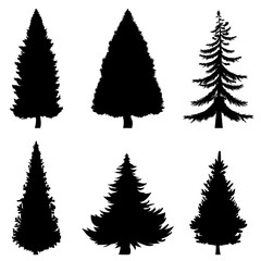 Vector Black Silhouettes of 6 Pine Trees on White Background
