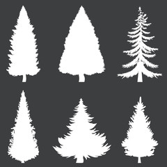 Vector White Silhouettes of 6 Pine Trees on Black Background