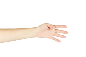 Female hand on a white background. Isolated.