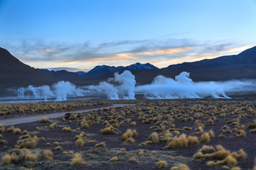 Geysers of the Tatio at sunrise. Atacama. Chile
