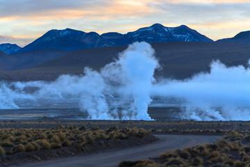 Geysers of the Tatio at sunrise. Atacama. Chile