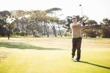 Sportsman playing golf