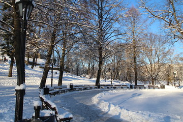 People are walking in the park in Riga, Latvia. Winter background, landscape. Winter trees in wonderland. Winter scene. Christmas, New Year background