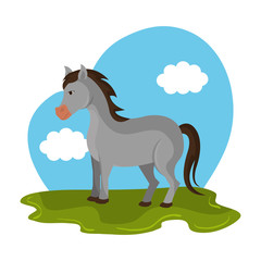 Fotobehang Pony horse animal farm in the field vector illustration design