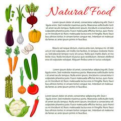 Vegan food poster with vegetables