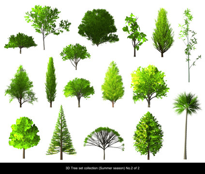 Green leaf Tree summer season set for architecture landscape design, 3D Tree isolated on white No.2