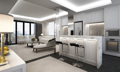 Luxury living room and pantry design