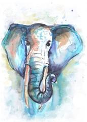 hand drawn watercolor elephant. watercolour illustration