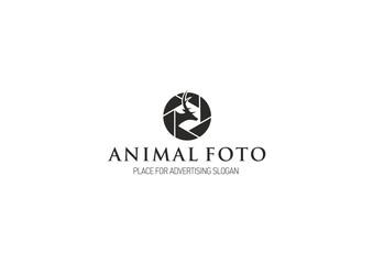 Animal Foto Logo