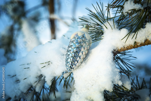 Silver cone on a fir tree branch in the snow covered wood christmas