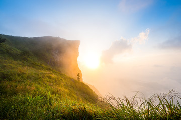 cliff with fog on sunrise landscape