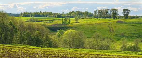 Foto auf Leinwand Hugel May landscape with green fields, dirt road and forest.
