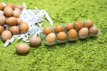 The packaging material for eggs. Material Green Paper,Eggs with green background, select focus