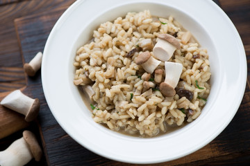 Closeup of a white plate with porcini risotto, selective focus