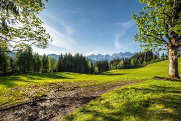 Landschaft mit Blick auf die Berge Wilder Kaiser Tirol