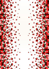 Floral border print with rose flowers