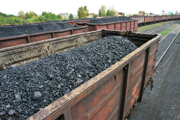 rail cars loaded with coal