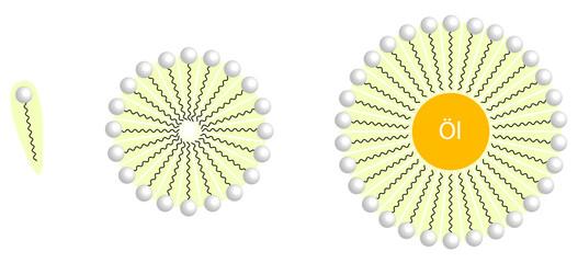 Micelle mit Öltröpfchen