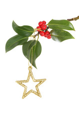 Glitter Christmas star and holly