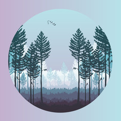Vector pine forest landscape. Beautiful hand drawn illustration - dark forest with pine trees, outdoor scene. Made using clipping mask, you can change image