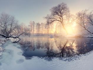 Christmas morning landscape