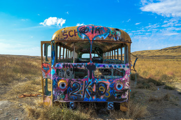 Front of school bus with lots of graffiti.