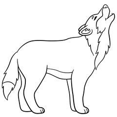 Coloring pages. Cute beautiful wolf howling.