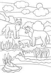 Coloring pages. Mother and father wolves look at their baby.