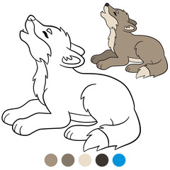 Color me: wolf. Little cute baby wolf howling.