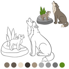 Color me: wolf. Father wolf howls with his baby.