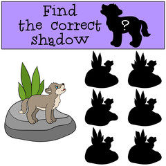 Educational game: Find the correct shadow. Little baby wolf howl