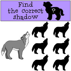 Educational game: Find the correct shadow. Cute beautiful wolf h