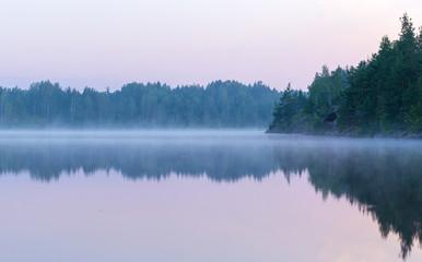 zomer ochtend mist