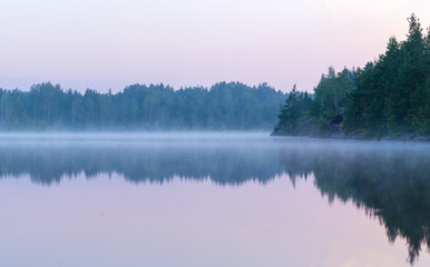 Aluminium Prints Purple summer morning fog