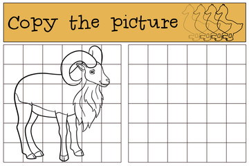 Educational game: Copy the picture. Cute beautiful urial smiles.