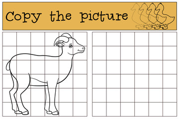 Educational game: Copy the picture. Little cute lady urial.
