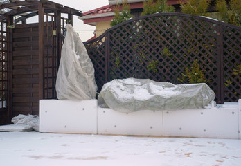 Protection of plants for the winter on the terrace