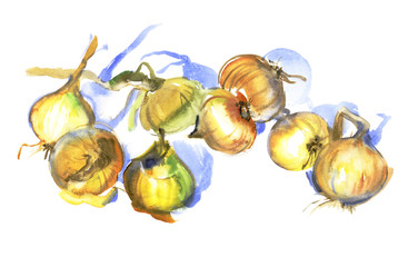 Onion, The eight onions on a white background